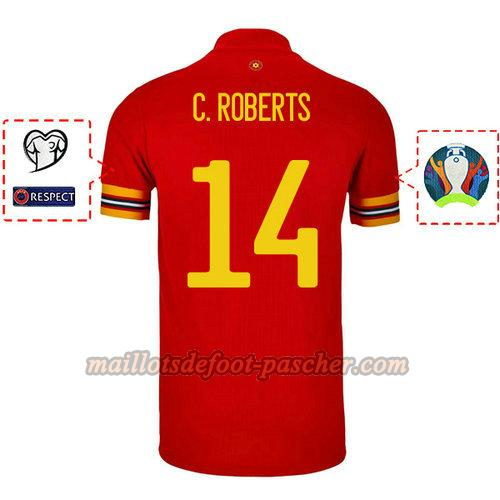 maillot galles 2020 domicile connor roberts 14